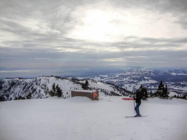Mount Mt Washington ski BC British Columbia Vancouver Island