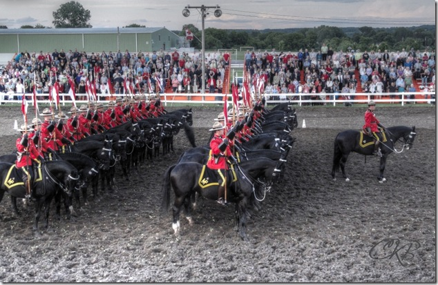 RCMP musical ride,horses,riding, Stirling Ontario,Canada