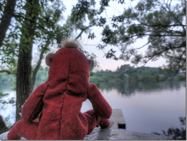 Glen Ross,Trent,Quinte West,Trenton,conservation,railway monkey,river,nature,Lower Trent Conservation