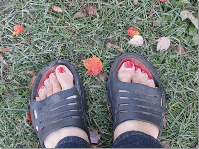 feet,fall,leaves,Canada,wordpress,blogging