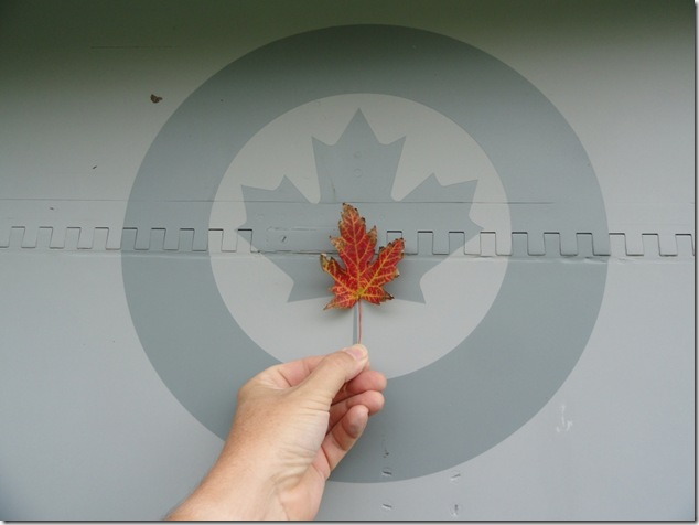 RCAF,Royal Canadian Air Force,maple leaf,the maple leaf forever,and know you know,k12,education,Canada