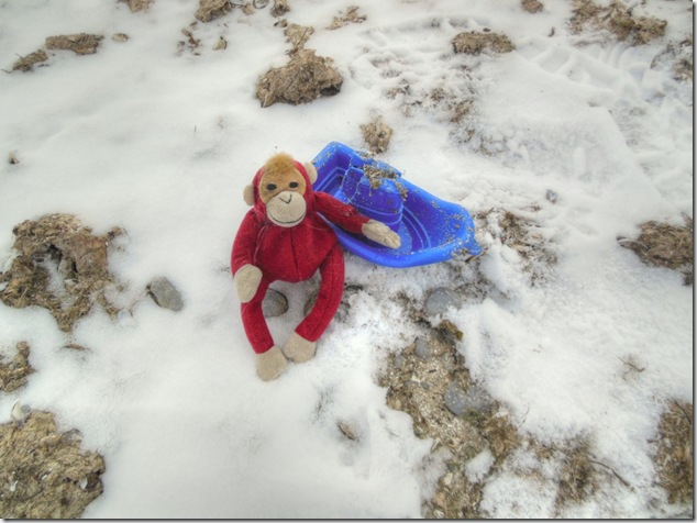 railway monkey