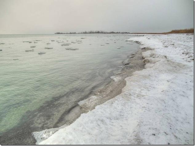 colonial nesting ground,High Bluff Island,Gull Island,migratory birds,Lake Ontario,Presquile, Presqu'ile Provincial Park
