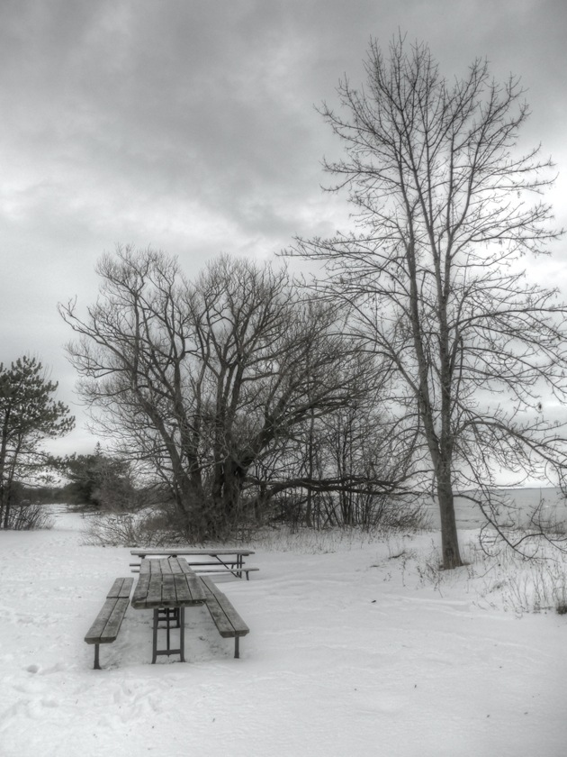 snow,clouds,pincic tables,winter,Lake Ontario,Presqu'ile Provincial Park