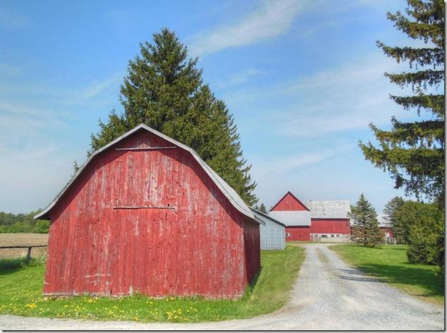back roads,history,barns,Ontario,Smithfield