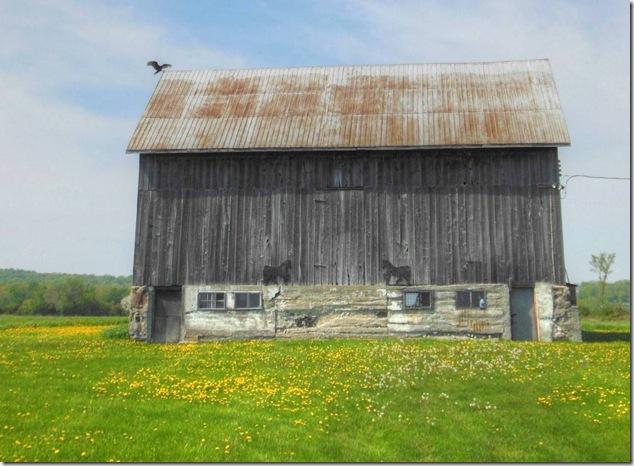 back roads,history,barns,Ontario