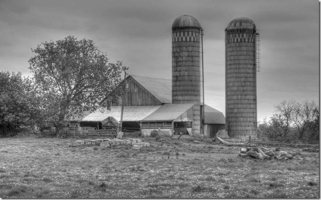 back roads,ontario,farm,silo